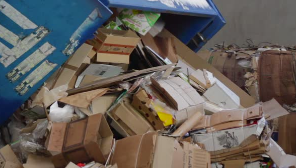 colectare deseuri hartie carton arad