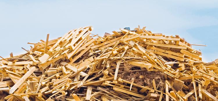 colectare deseuri din lemn satu mare